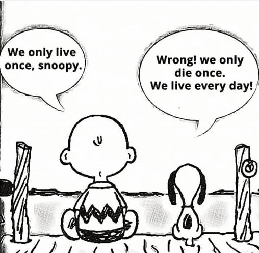 Snoopy and Charlie Brown Talking Life